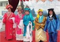 山东淄博青年志愿服务队参加春节文化周活动
